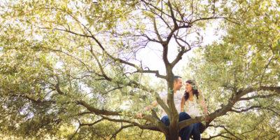 couple dans arbre olivier photographe famille sur de la france studio graou